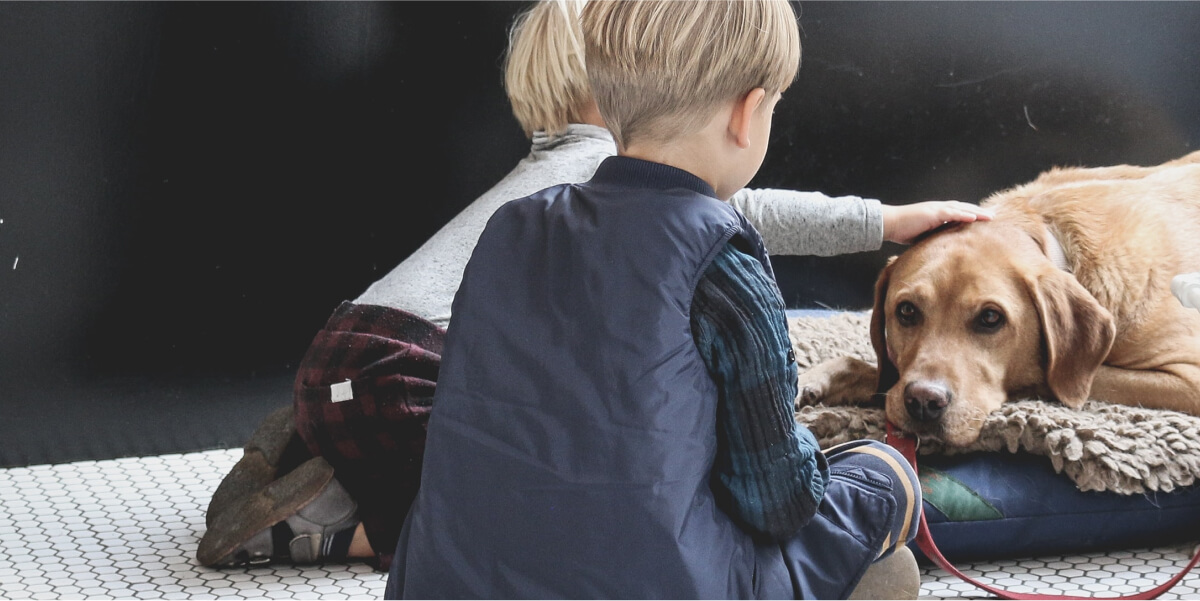 Why pets are ideal friends to children